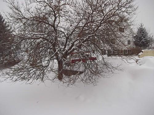 snow geotagged balcony pointandshoot fijifilm framingham fujifilmfinepix fujifilmav150