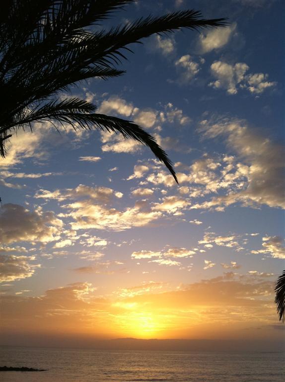 Qué hacer en Tenerife : Tenerife qué hacer en tenerife - 5434484038 58bde1e9ed b - Qué hacer en Tenerife para tener unas vacaciones completas