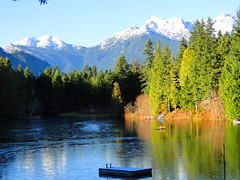 Lake Cushman Wa.