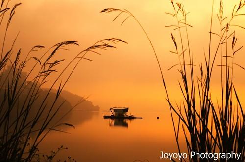 sun moon lake nikon taiwan 南投 日月潭 d90 魚池鄉 joyoyo mygearandmepremium artistoftheyearlevel4 artistoftheyearlevel5