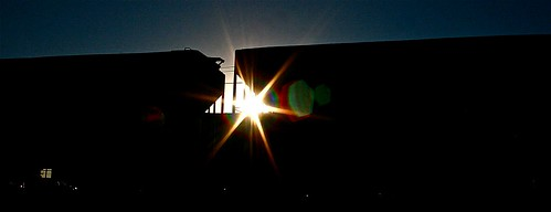 morning sun train sunrise earlymorning flare rays sunrays freight railcars trainyard sunflare hoppers freightyard fr8 csxtrainyard howellfreightyard