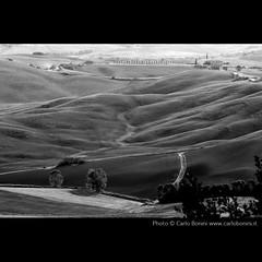 Val d'Orcia in bianco e nero [serie]