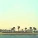 Tropical Marina by Lemon Beer