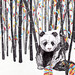 Panda by www.sandradieckmann.com