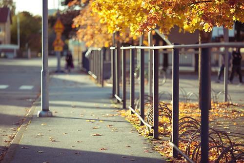 street school autumn blur colors field leaves canon finland shadows bokeh mark ii 5d f2 shallow split tones depth tone ef 2010 muted lightroom pori 135l f2l porilaistenkatu