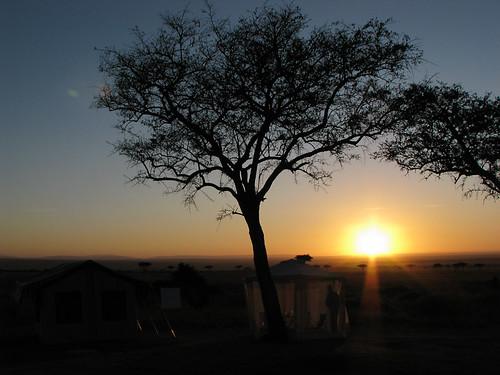 africa family people sunrise kenya björn ken safari event afrika region kristoffer familj soluppgång stoffe masaimaranationalreserve riftvalleyprovince människor maasaimaranationalreserve carnmarker oloolologatecamping