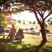 Day in the Park by Dan Bennett2891