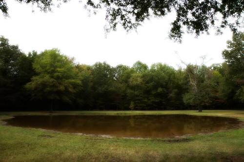 lake water tennessee civilwar battlefield 1862 shiloh battlefields bloodypond