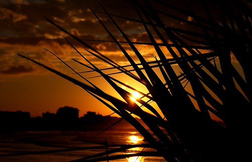 sunset italia tramonto nuvole mare silhouettes rimini sole riflessi controluce città emiliaromagna pianta romagna mareadriatico paesaggimarini imieiluoghi chicècèincontrianordest