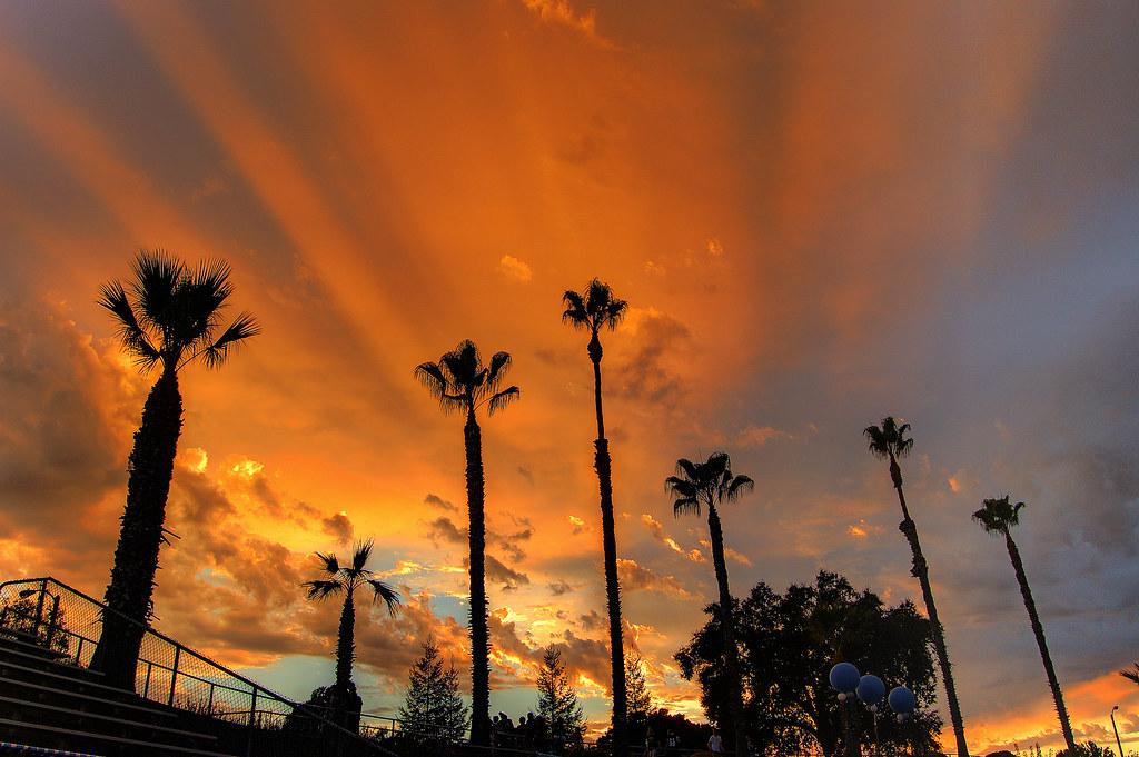 Halftime Sunset