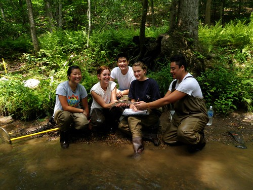 Image of DEP interns learning to monitor wildlife.