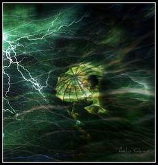 The Storm (Virgin Suicide)