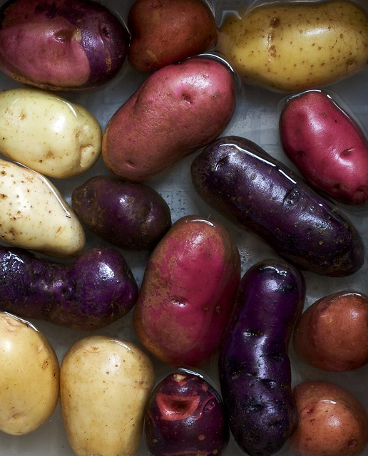 Colorful Heirloom Potatoes