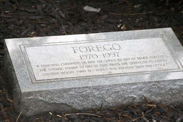 Header of forego