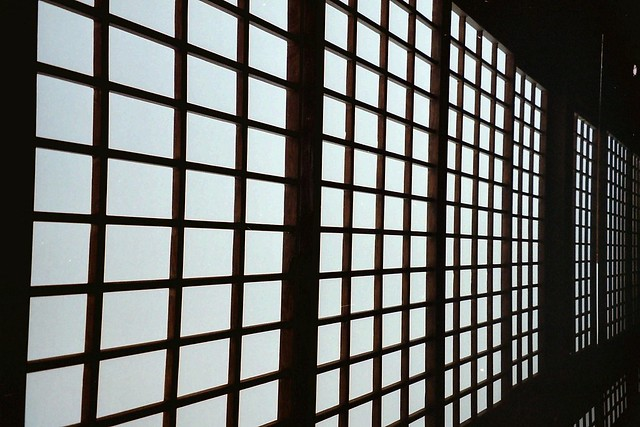 Japanese paper walls flickr photo sharing for Wall to wall paper