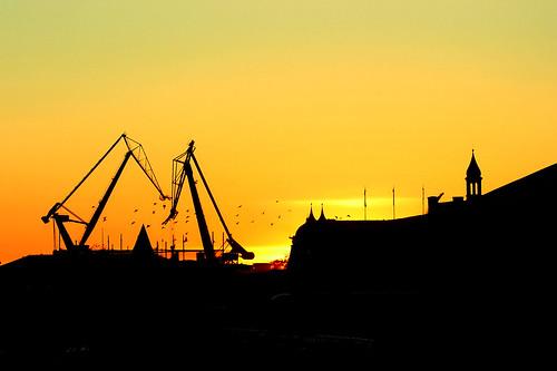 Cranes orange