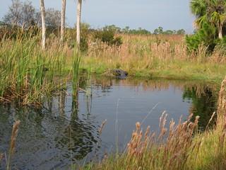 St. Vincent Island freshwater lake