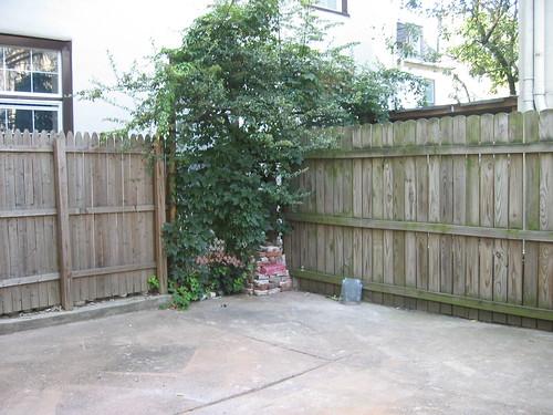 Rent My Philadelphia Garden Apartment Casacara Old Houses For Fun Profit