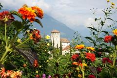 2010-10-01 10-03 Südtirol 063 Meran, Tscherms, Waalweg