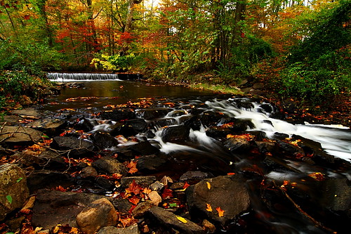 autumn water canon landscape newjersey nj parks tokina rapid 1224mm naturesfinest coth bej 400d mywinners natirar rubyphotographer
