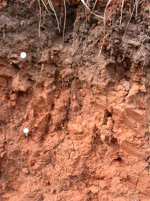 Subangular soil structure flickr photo sharing for Soil structure
