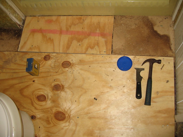 Bathroom Wood Floor Repair And Toxic Mold Pictures
