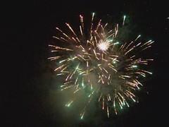 Hebden bonfire 2010