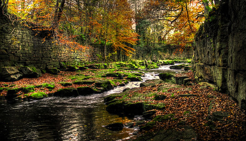 autumn colors canong6 platinumphoto derewent manidas2000
