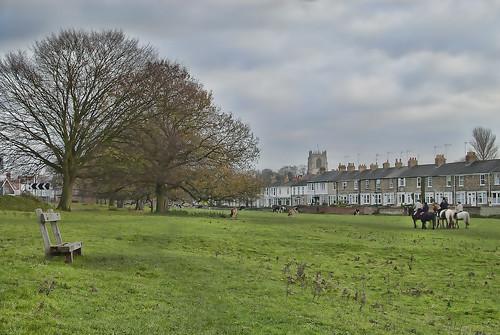Beverley Westwood