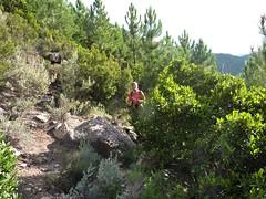 Sentier de Capeddu : arrivée sur le sentier ancestral
