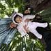 ayu bamboo by Cory.Lum