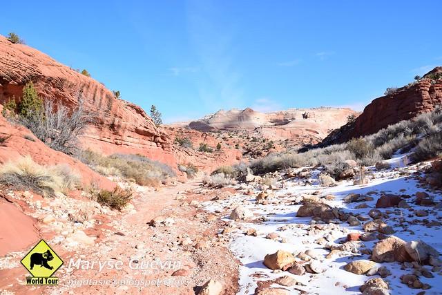 le canyon de Buckskin Gulch USA utah