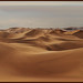 The Gobi Waves