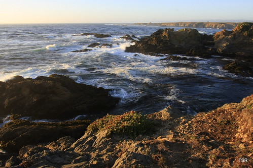Coast at Fort Bragg