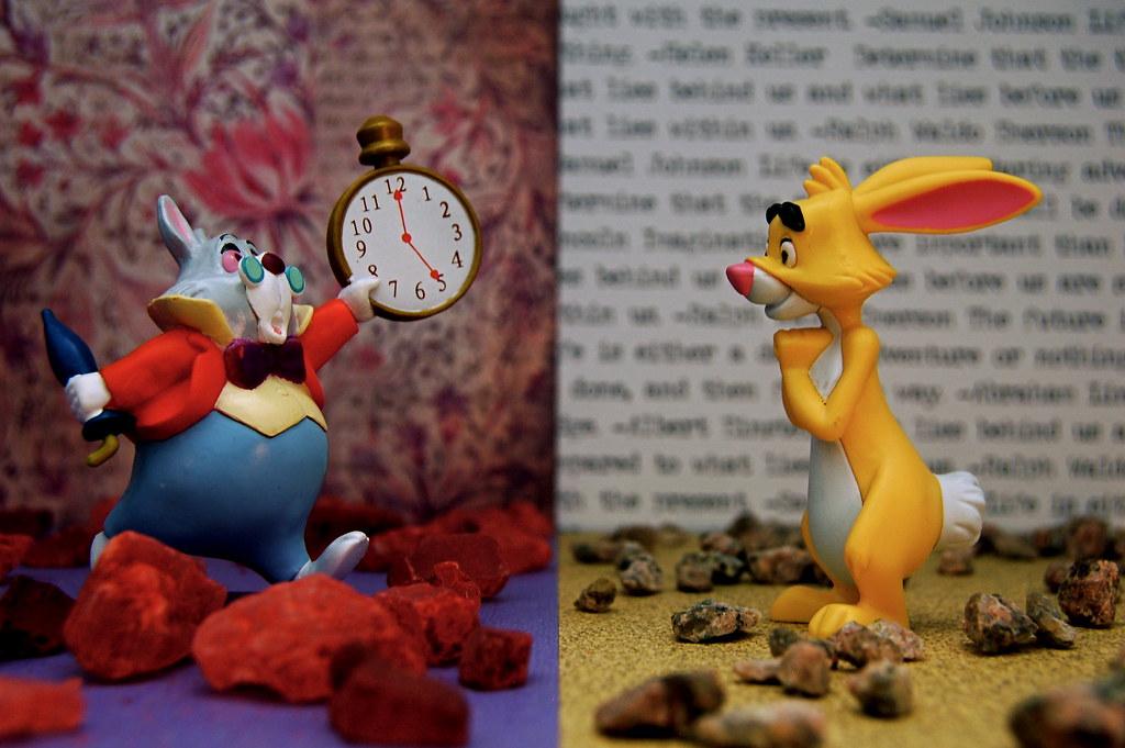 White Rabbit vs. Rabbit (256/365)
