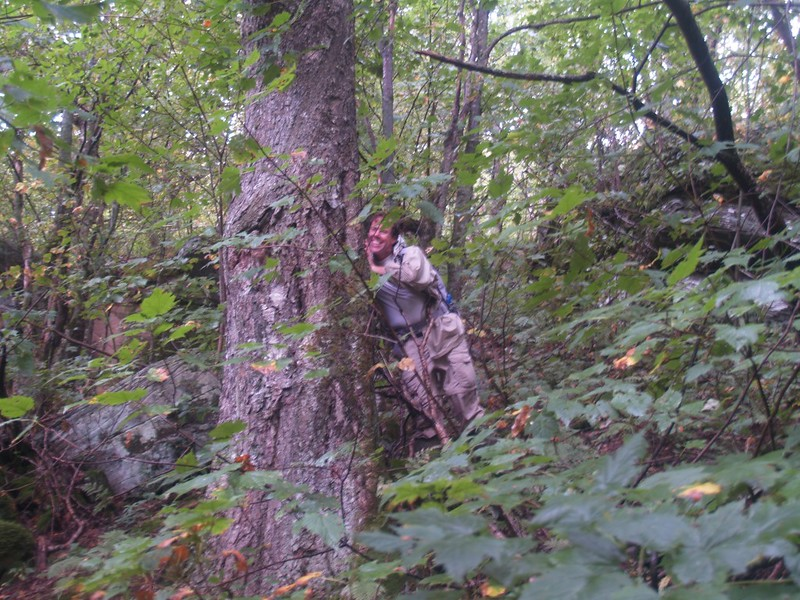 Paul hugging a tree. This tree is part of the old-growth forest above 3000 feet