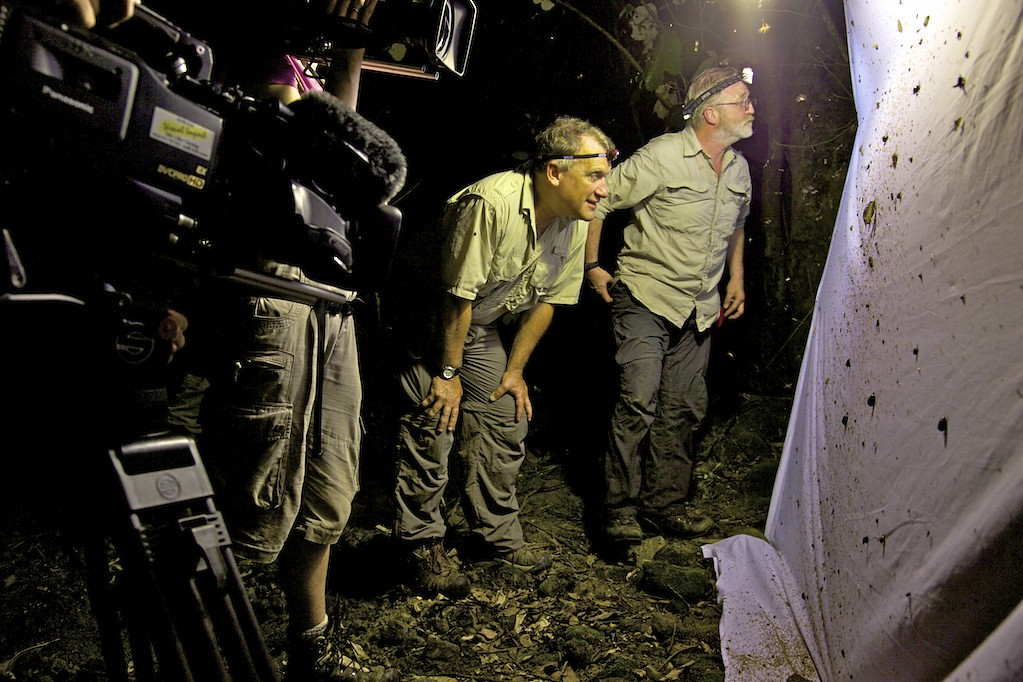 Dr. Rabinowitz & the BBC expedition team examine moths in Bhutan