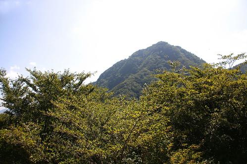 Hakone Landscape - 08