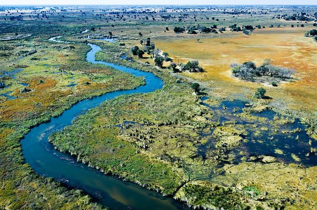 Okavango Deltaet