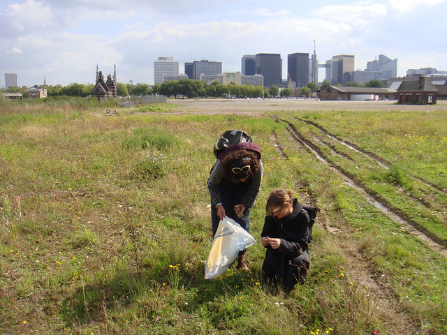 photo of people picking greens in a field