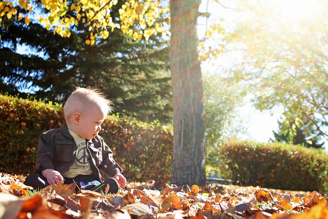 Braden's First Fall