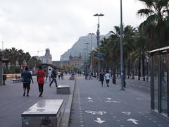 Barcelona Gothic Walking Tour