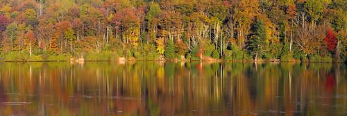panorama lake tree fallcolor northcarolina blueridgeparkway photostitch pricelake westernnorthcarolina southernappalachians ccbyncsa canonpowershotsx10is booneforkoverlook