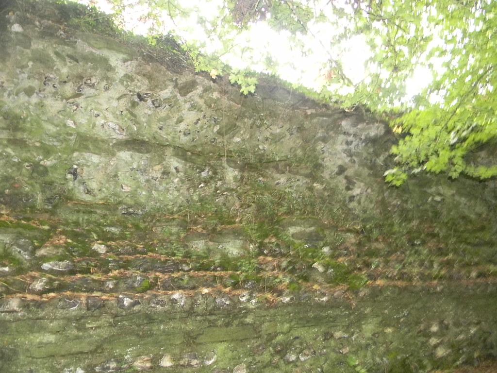 Calleva town wall Mortimer to Aldermaston