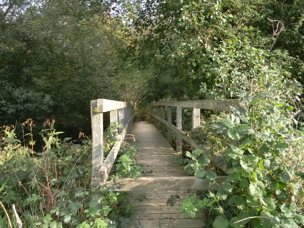 bridge Buxted Circular