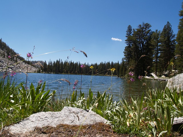 Lower State Lake (Lake 10250)