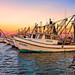 Fishing Boats-Edit-1024.jpg