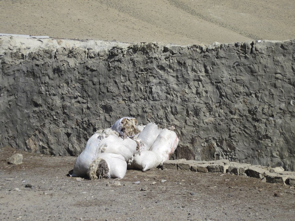 Bags of sheep wool, Tajikistan