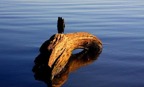 water log blue blues waves ripples shadowracer26 lake clintonlake lawrencekansas