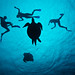 Mating turtles & snorkelers by Luko Gecko